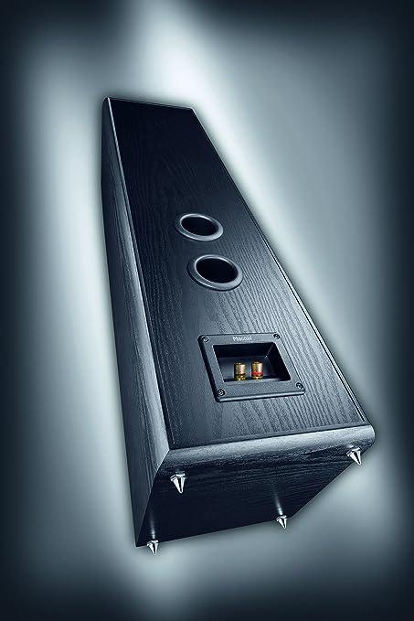 Magnat Monitor Supreme 802 - Altavoces de suelo (Potencia RMS/Max: 170-340 W, 4-8 Ohmios): Amazon.es: Electrónica