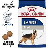 Royal Canin Croquetas para Perros Grandes, Maxi Adult, 15.8 kg (El empaque puede variar)