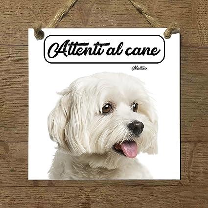 Maltese Mod 2 Attenti Al Cane Targa Piastrella Cartello Ceramic