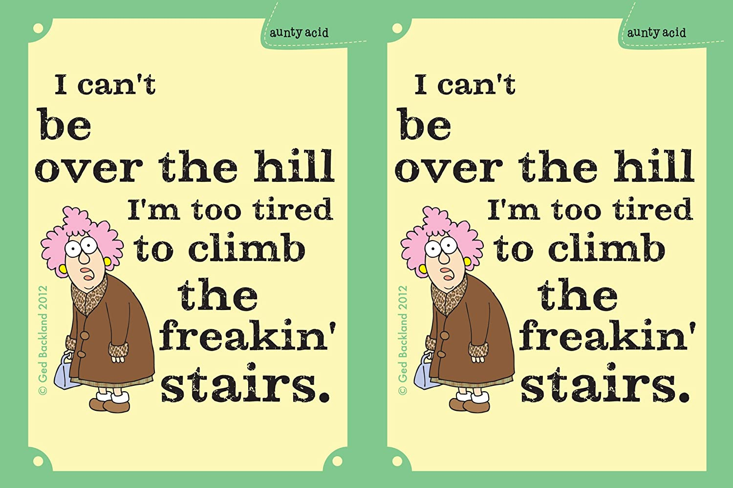 Tree-Free Greetings sg23764 Hilarious Aunty Acid Over the Hill by The Backland Studio Ltd 16 Oz Sip N Go Stainless Steel Lined Tumbler