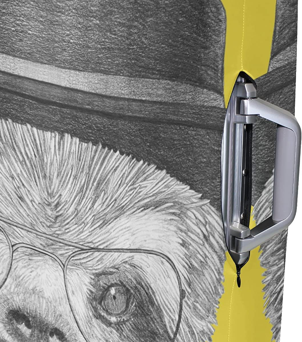 GIOVANIOR Portrait Of Sloth With Hat And Glasses Luggage Cover Suitcase Protector Carry On Covers