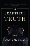 A Beautiful Truth: A Novel