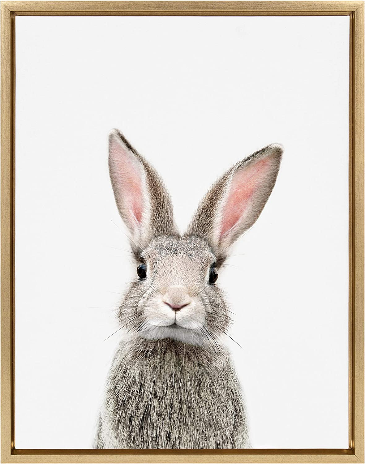 Kate and Laurel Sylvie Female Rabbit Framed Canvas Wall Art by Amy Peterson, 18x24 Gold, Baby Animal Home Decor