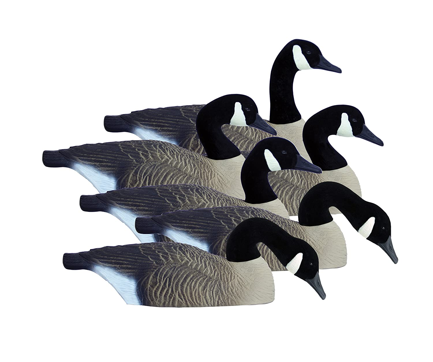 b09e130a9b50 Amazon.com   Higdon Outdoors Canada Full-Size Half Shell Hunting Decoys    Hunting Decoys   Sports   Outdoors