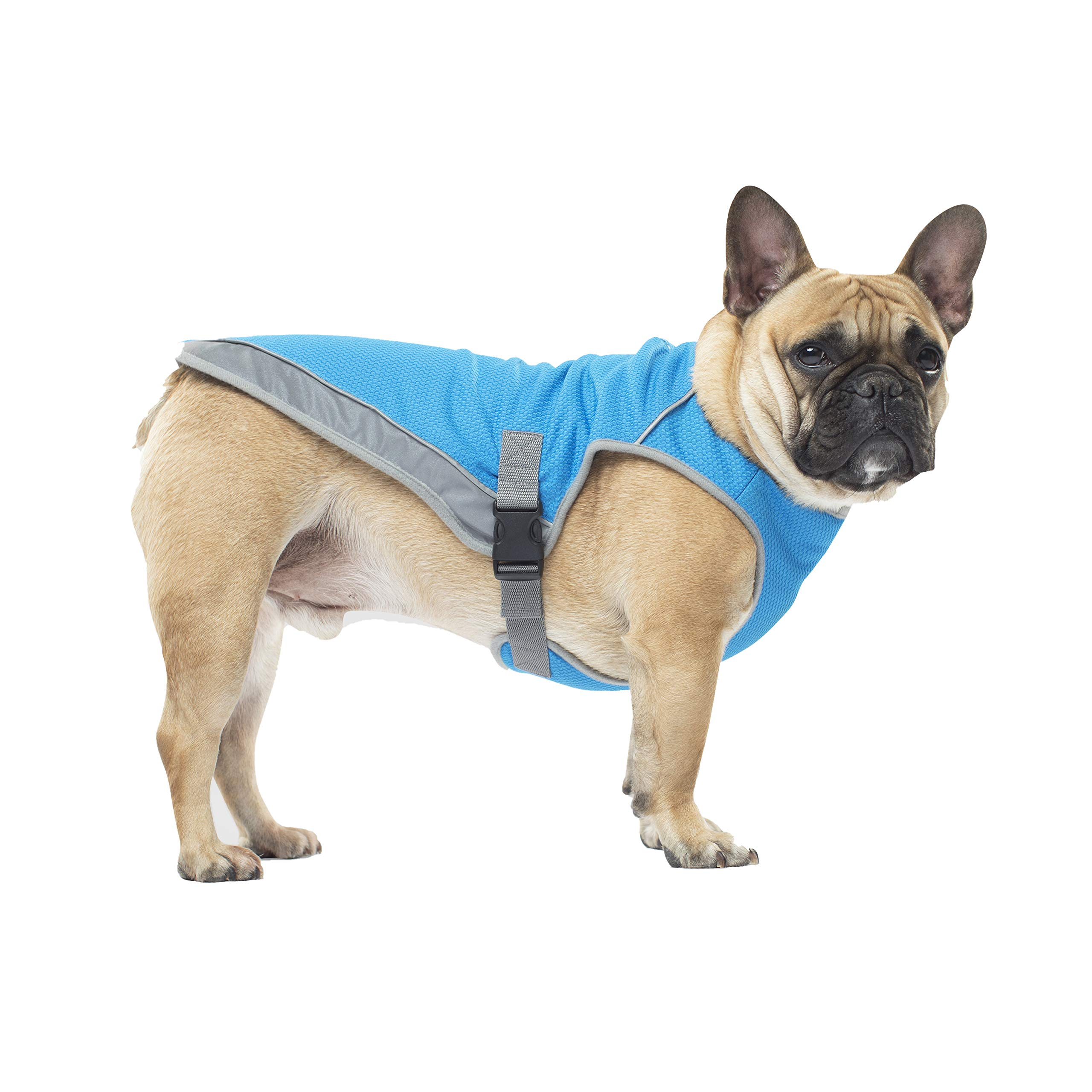 Canada Pooch Chill Seeker Cooling Vest - Aqua - 14 by Canada Pooch