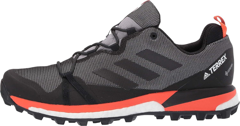 adidas outdoor Mens Terrex Skychaser Lt GTX Walking Shoe
