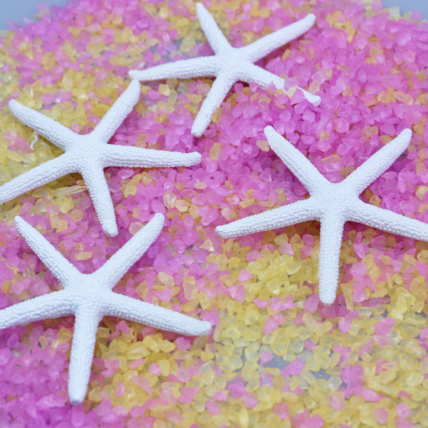 LJY Resin Starfish for Crafts