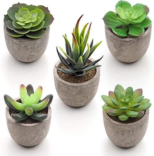 SONGMICS Artificial Potted Succulents, 5 Pieces of Various Artificial  Plants, Decorative Plants, Fake Houseplants for Living Room, Office,  Bookshelf, ...