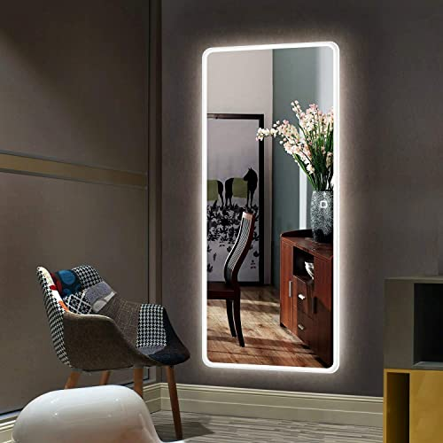 Hans Alice Large 65 x22 LED Full Length Backlit Mirror- Oversized Rectangle Dressing Mirror with Touch Button LED