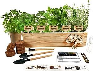 Hand-Mart 5 Herb Seeds Window Garden Starter Kit, Basil Parsley Rosemary Thyme Mint, Including Everything-Soil, Pots, 3 Garden-Tool, Pruner, Sprayer, Plant Labels, Planter, DIY Craft for Kids Adults