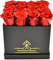 Valentine's Day Collections| Roses with Longevity (Medium, Red)