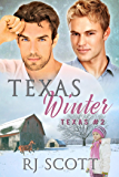 Texas Winter (Texas Series Book 2)
