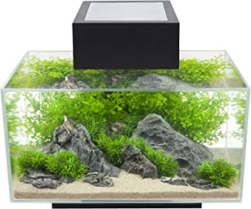 Fluval Edge LED Fish Tank