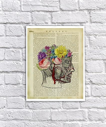 amazon com gnosis picture archive anatomy art human head anatomy