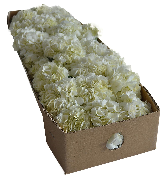 Amazon Farm2door Farm Direct Wholesale Fresh Flowers 30