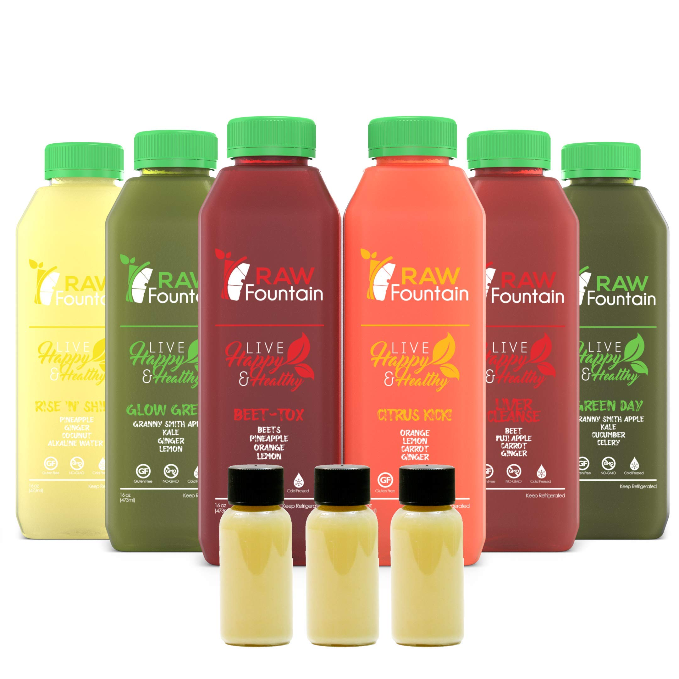 RAW Fountain 3 Day Juice Cleanse, 100% Natural Raw, Cold Pressed Fruit & Vegetable Juices, Detox Cleanse Weight Loss, 18 Bottles, 16oz +3 Ginger Shots by Raw Fountain