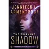 The Burning Shadow (Origin Series Book 2)