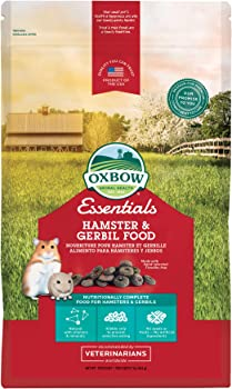 best fresh food for gerbils