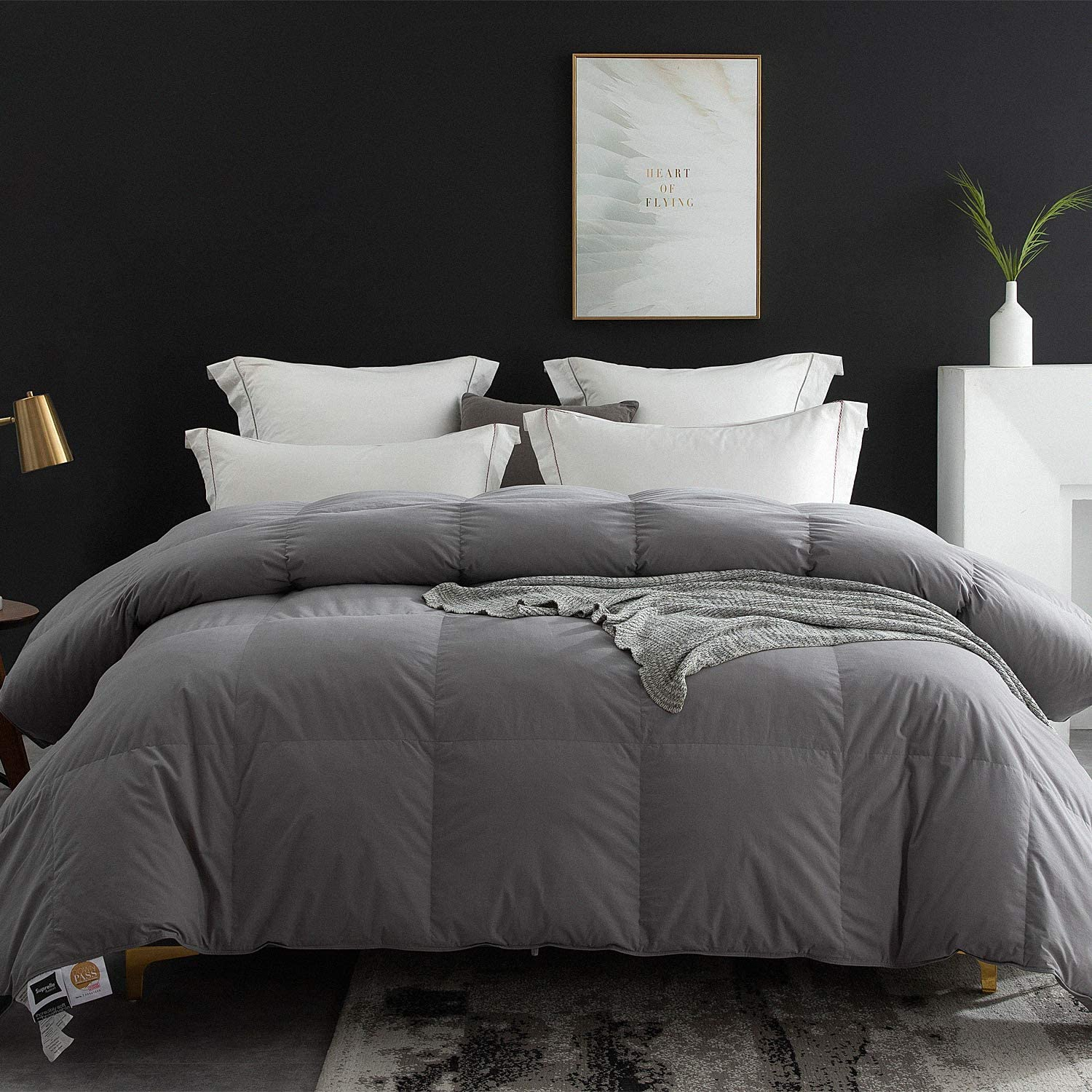 Globon Goose Down Comforter Queen Size All Season Duvet Insert Ultra-Soft 100% Cotton, 38OZ,650 Fill Power, Medium Warmth Hypoallergenic with Corner Tabs, Grey