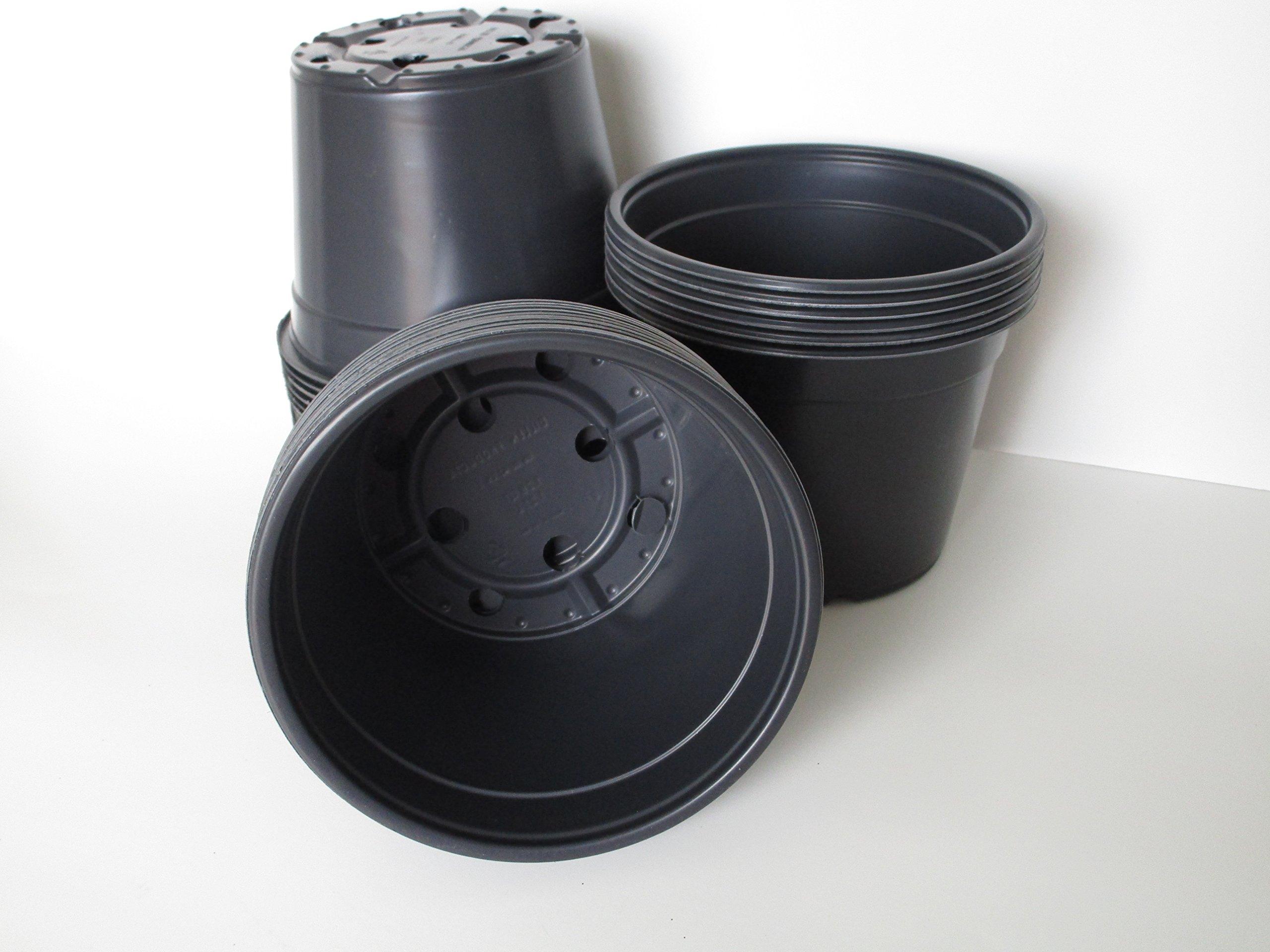 DILLEN 6'' Diameter Round Black Plastic Nursery Pot (100)