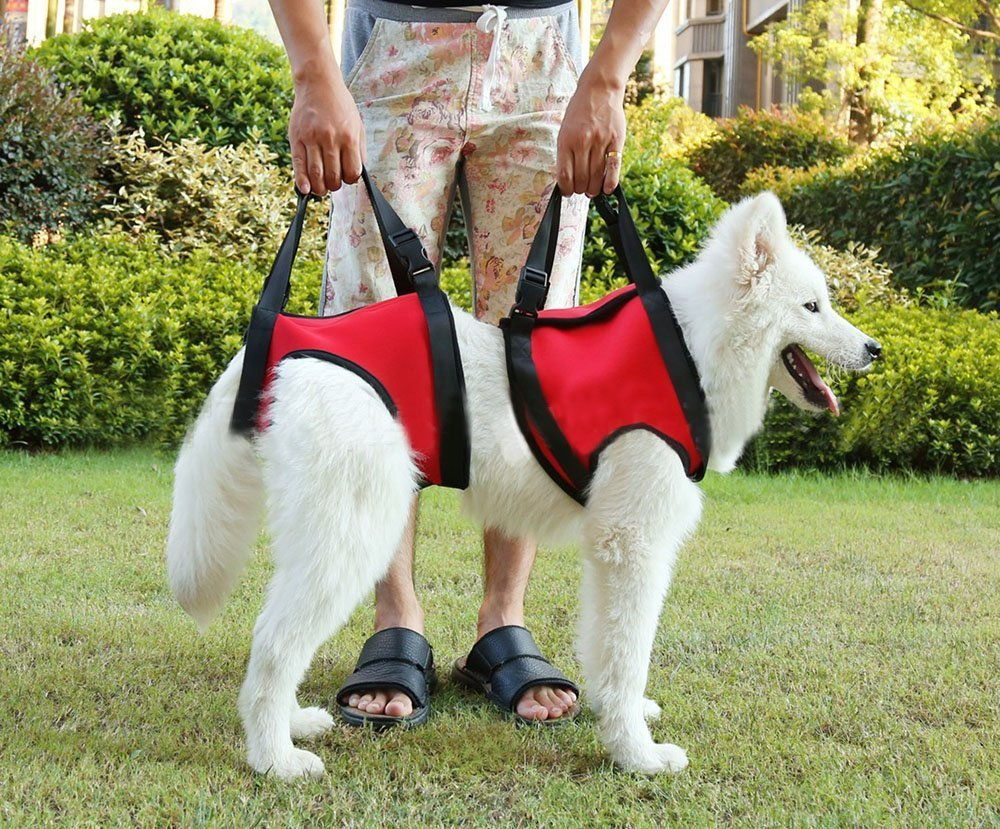Lifeunion Dog Foreleg and Hind Rear Legs Sling Dog Lift Support Rehabilitatio...