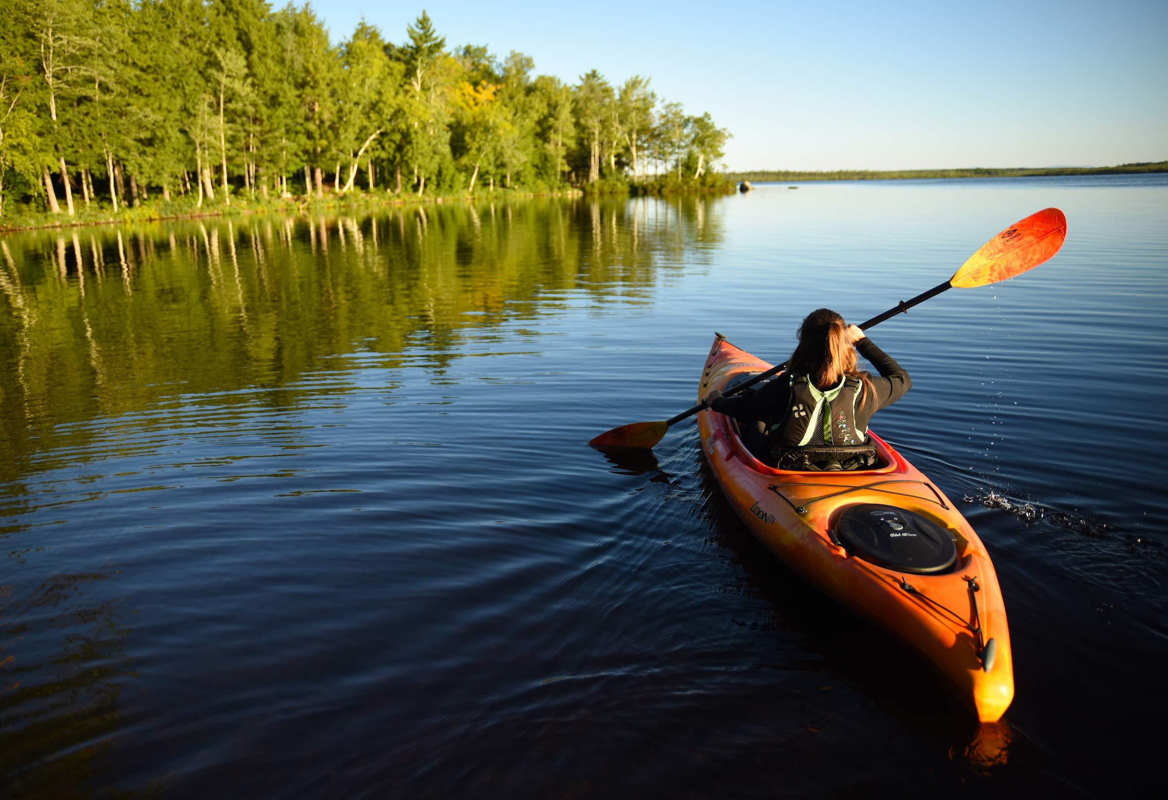 Carlisle Magic Plus Kayak Paddle (Sunrise, 220 cm) by Carlisle Paddle Gear (Image #6)