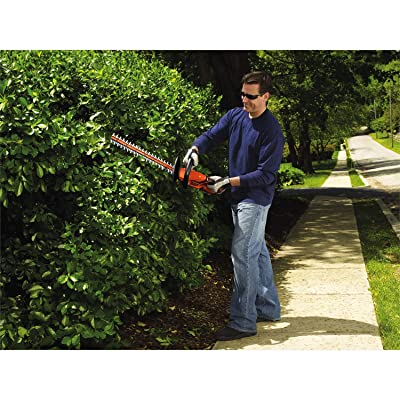 BLACK+DECKER 20V MAX Cordless Hedge Trimmer, 22-Inch (LHT2220)