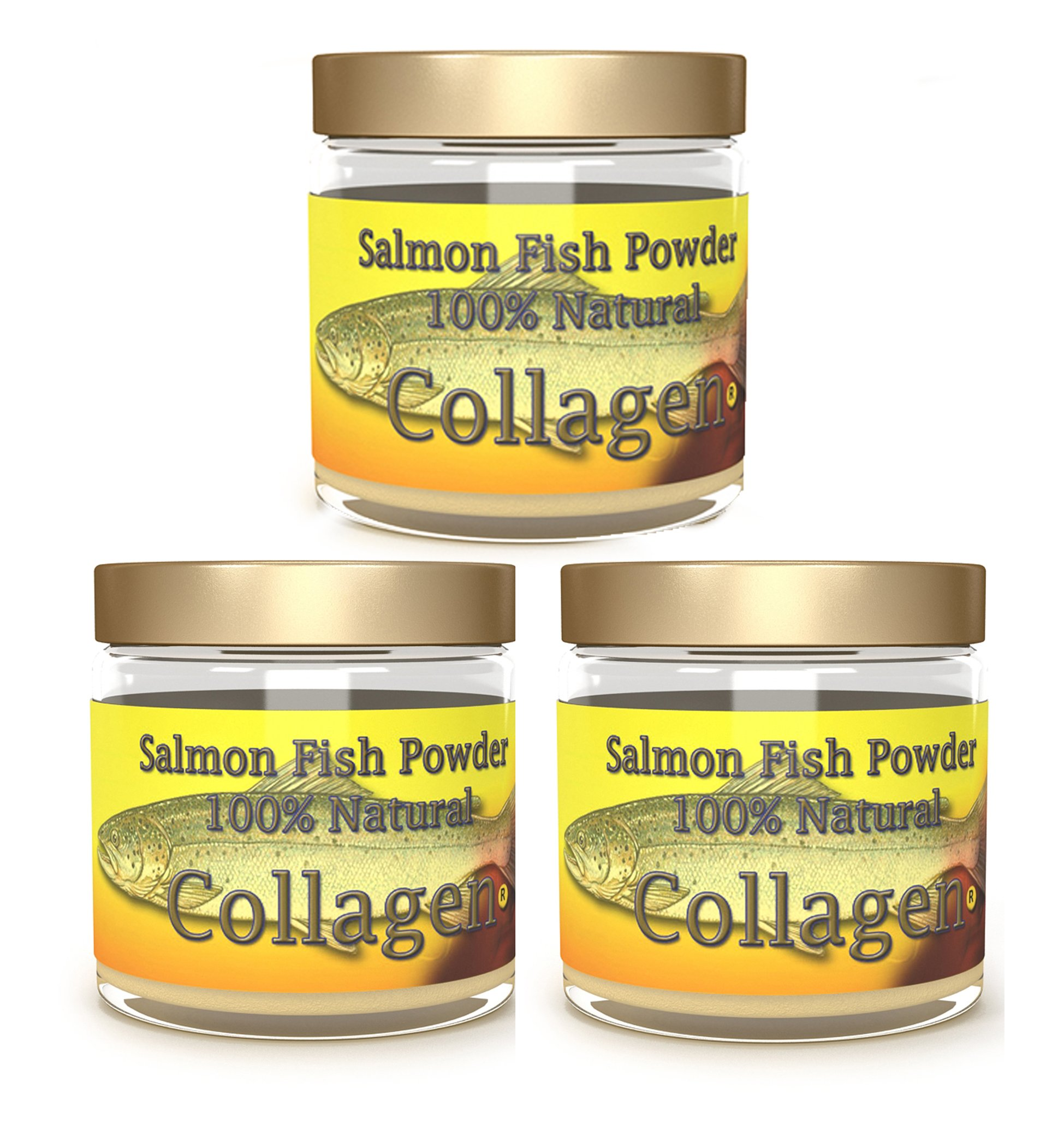 SALCOLL COLLAGEN Salmon Collagen Powder - Organic Collagen for Aids Tissue Cartilage & Bone Regeneration for Extra Energy Mobility & Vitality - 3 Pack