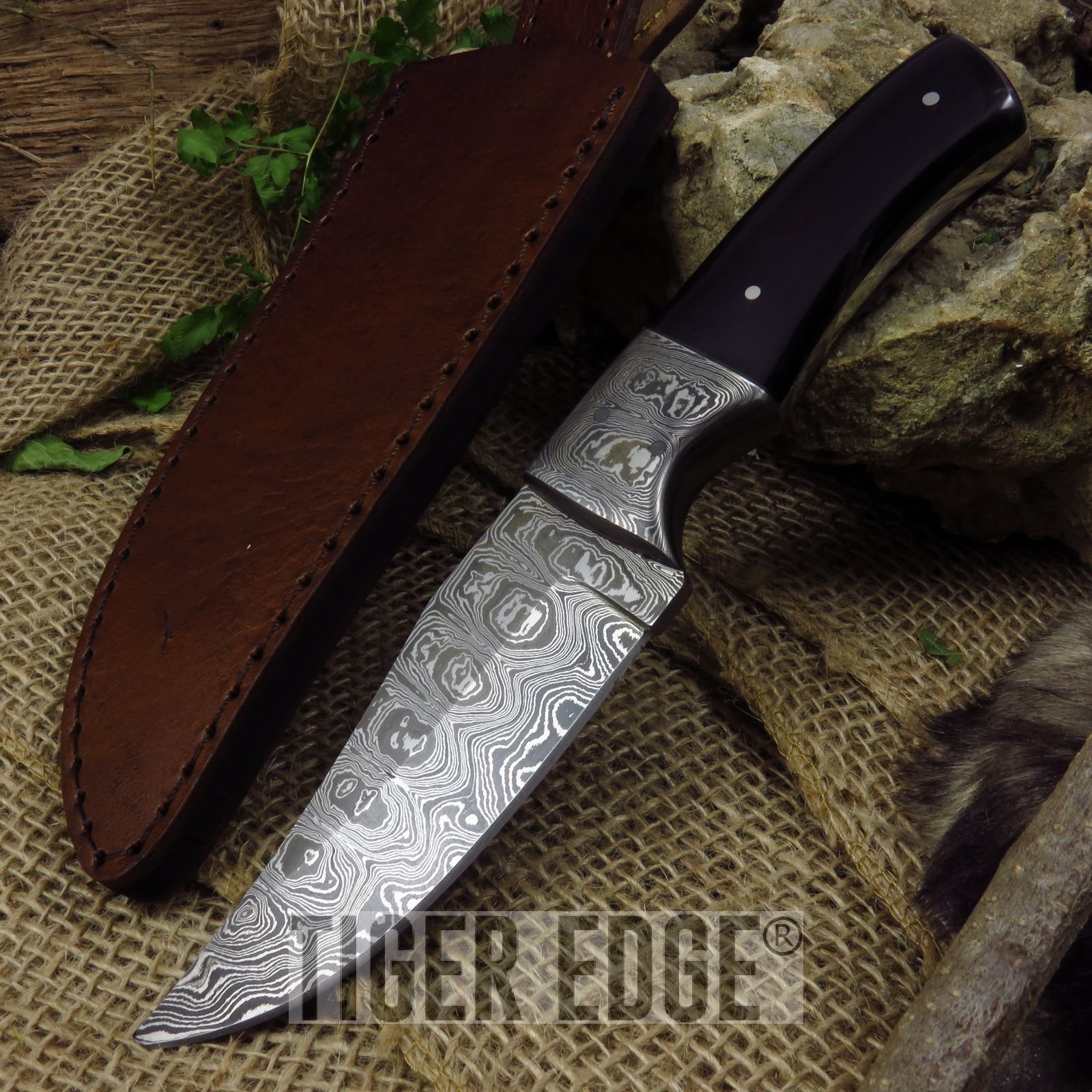 New 8. 5'' Damascus Steel, Buffalo Horn Handle, Full Tang Hunting Skinning ProTactical'US - Limited Edition - Elite Knife with Sharp Blade by New
