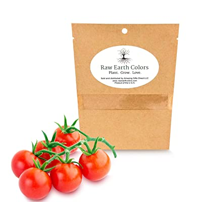 Cherry Tomato Seeds for Planting Home Garden - 500 Heirloom Vegetable Seeds Cherry Tomato : Garden & Outdoor