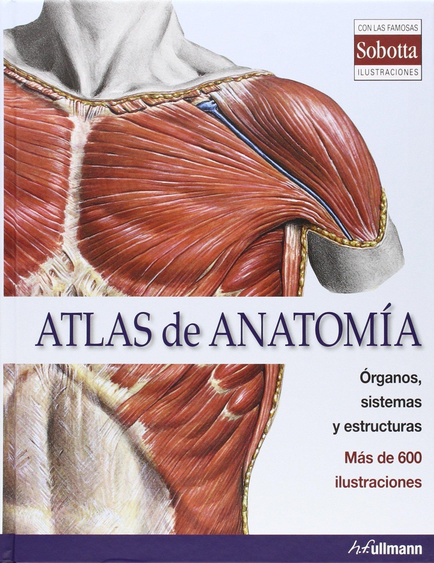 Atlas Anatomia: Amazon.es