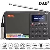 Ohok Radio Portátil Digital DAB/DAB + con Transmisor FM, Pantalla de LCD de 1.8 Pulgadas, Altavoz, Bluetooth y Reloj Despertador