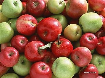 Αποτέλεσμα εικόνας για apple fruit in basket