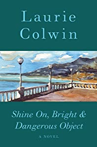 Shine On, Bright & Dangerous Object: A Novel
