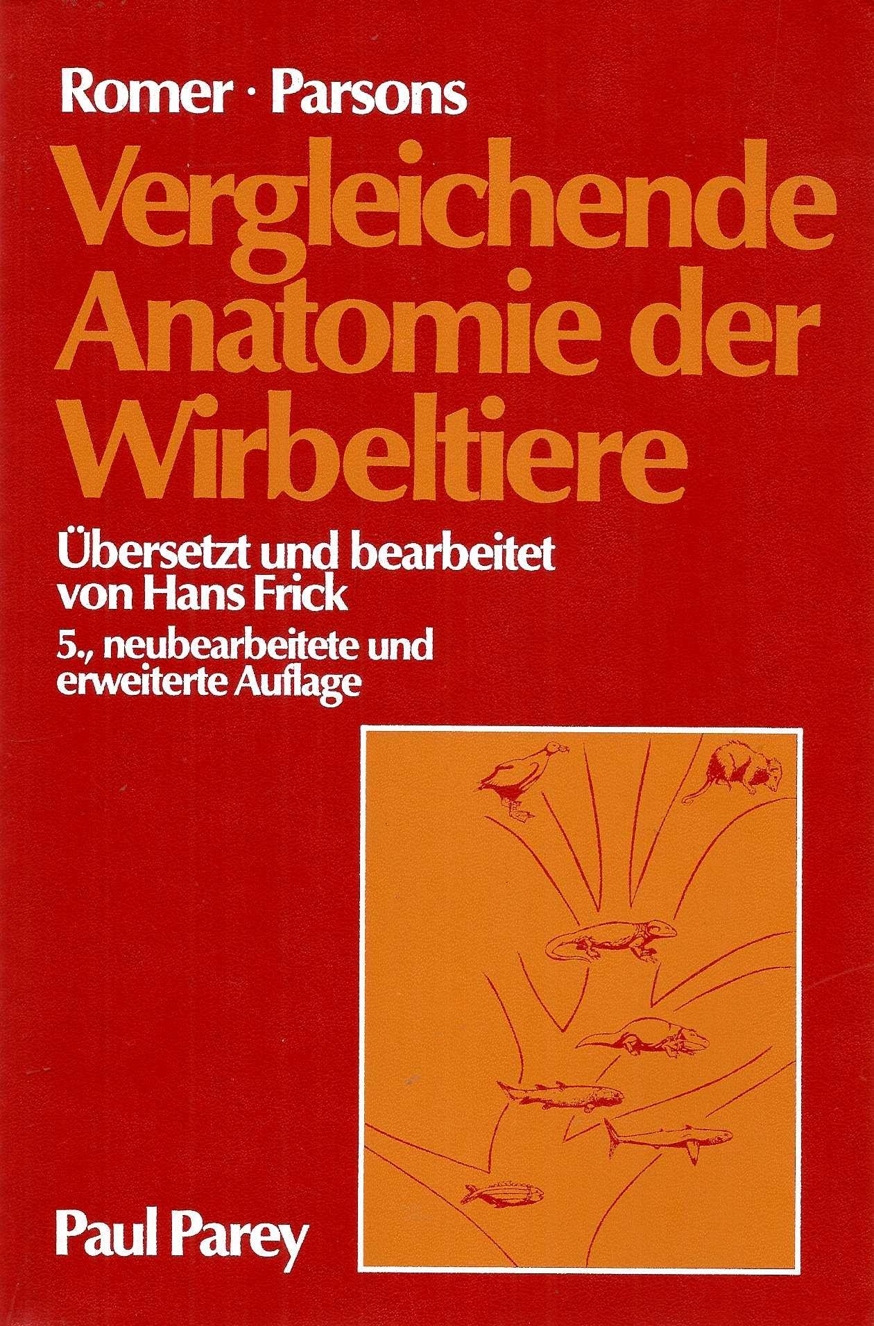 Niedlich Vergleichende Anatomie Biologie Ideen - Menschliche ...