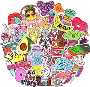 Waterproof Vinyl Aesthetic Stickers for Laptop Water Bottle Room Decor (50Pcs VSCO Girl Style)