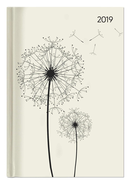 "Agenda giornaliera Style ""Dente di leone"" 2019, 352 pagine, 15x21 cm Alpha Edition 19.4154 Buchkalender Kalender / Buchkalender"
