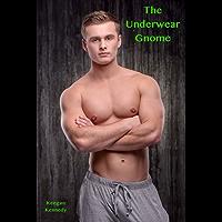 The Underwear Gnome (English Edition)