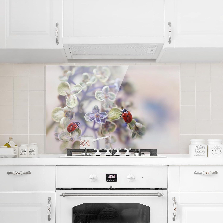 Bilderwelten Cr/édence en Verre Peinture Murale revetement Mural Cuisine dosseret de Cuisine Impression sur Verre Fond de Cuisine Coccinelles dans Le Jardin Paysage 2:3 Dimension: 40cm x 60cm
