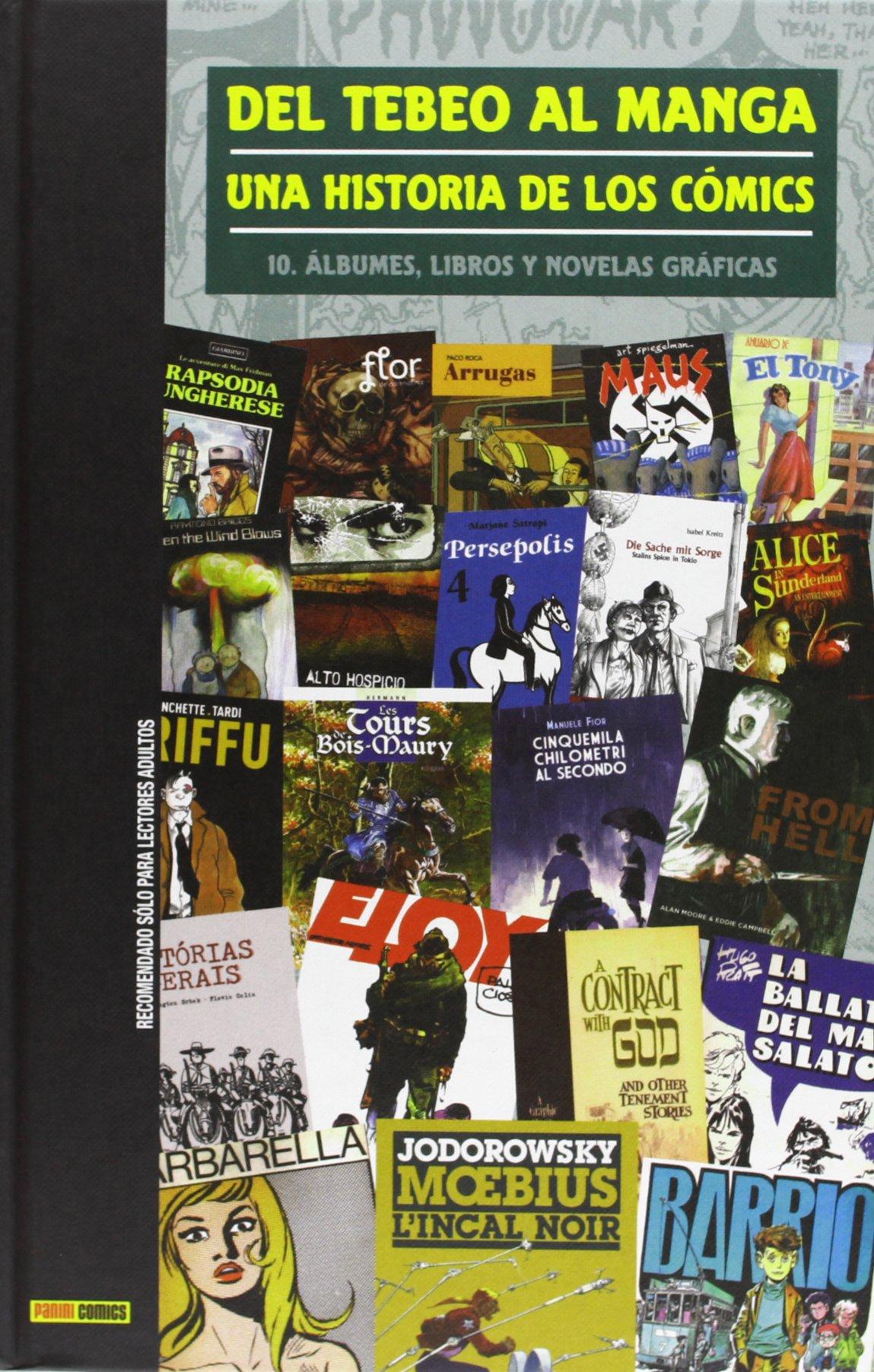 Del Tebeo Al Manga. Una Historia De Los Cómics 10. Álbumes, Libros ...