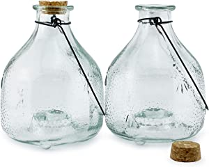 Darware Glass Wasp Traps (2-Pack); Wasp Catchers for Garden and Home Use