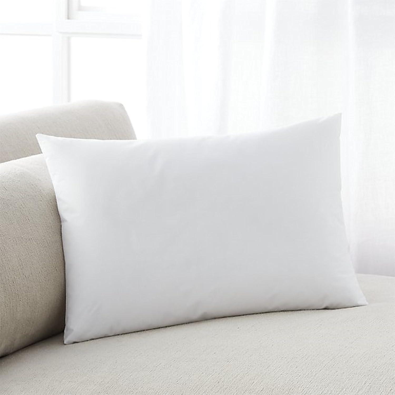 MoonRest Premium Hypoallergenic Stuffer Pillow Insert Form Sham Polyester Square 10 X 10