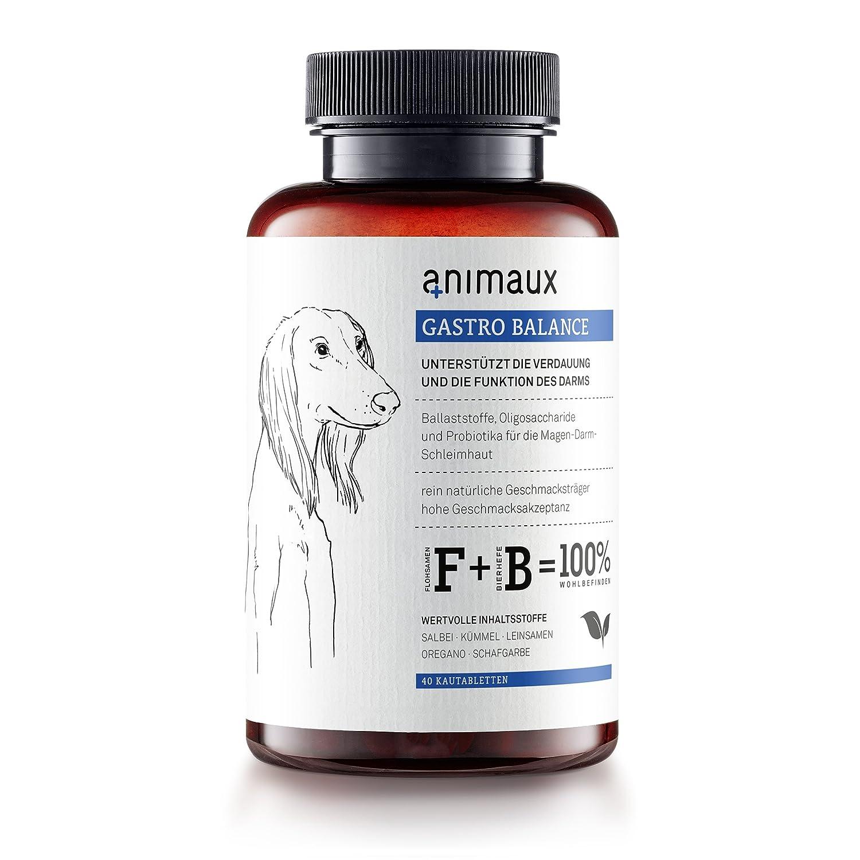animaux® - gastro balance für Hunde | Magen-Darm-Unterstützung ...