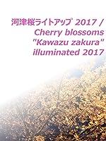 """ビデオクリップ: 河津桜ライトアップ 2017/Cherry blossoms""""Kawazu zakura"""" illuminated 2017"""