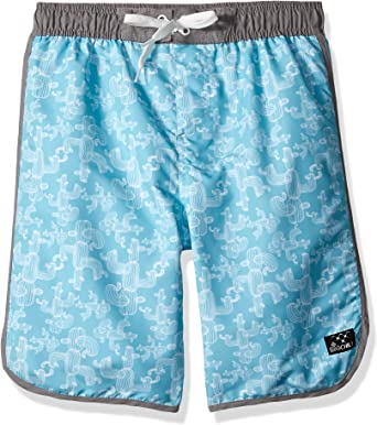 Big Chill Boys Big Printed Swim Trunks