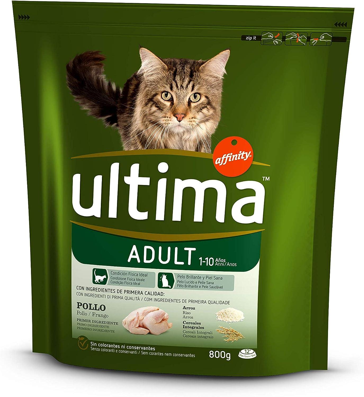ultima Pienso para Gatos Adultos con Pollo y Arroz - 800 gr: Amazon.es: Alimentación y bebidas