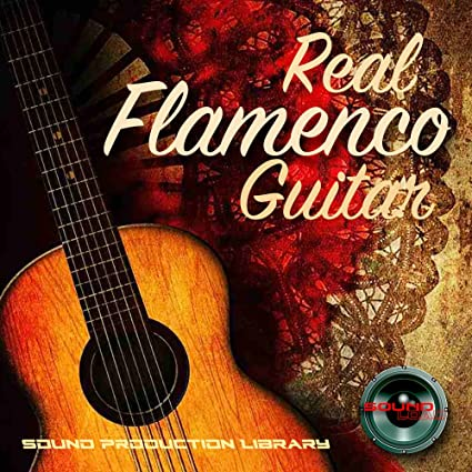 Amazon com: FLAMENCO GUITAR - Large Unique Original Samples