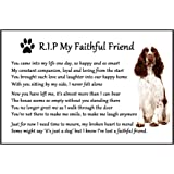 "Springer Spaniel Dog Bereavement Gift Magnet - RIP My Faithful Friend - dog loss, sympathy, memorial Flexible Magnet 6"" x 4"""