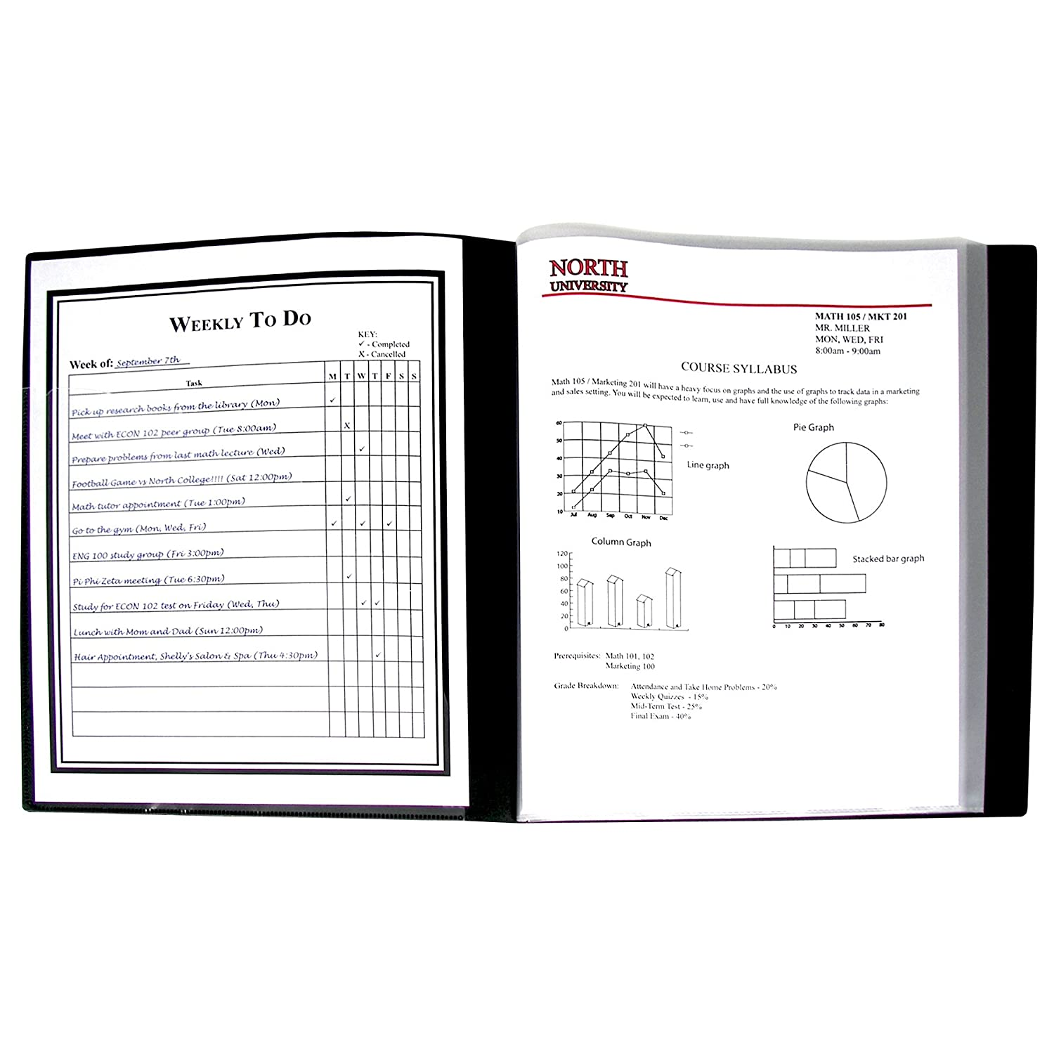 Amazoncom CLine 24Pocket Bound Sheet Protector Presentation