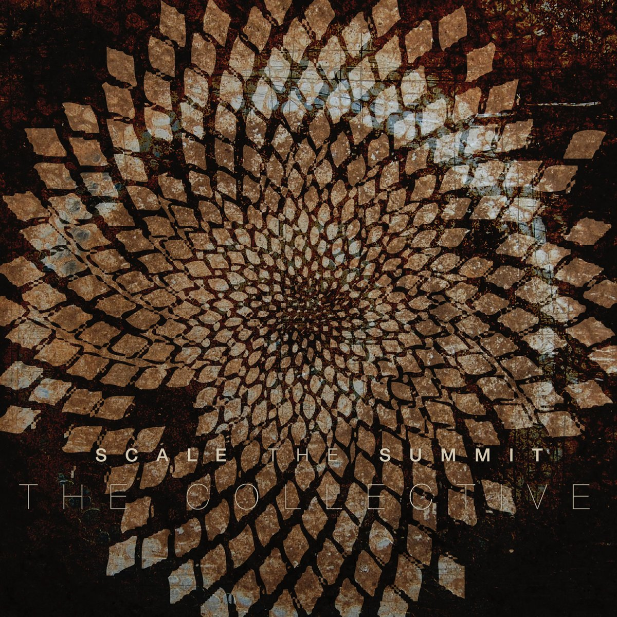 Vinilo : Scale the Summit - The Collective (Limited Edition, Colored Vinyl, Silver)
